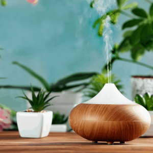 Diffusers & Oil Lamps