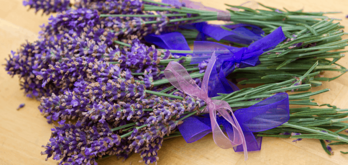 Sprigs Of Lavender With Ribbon On A table